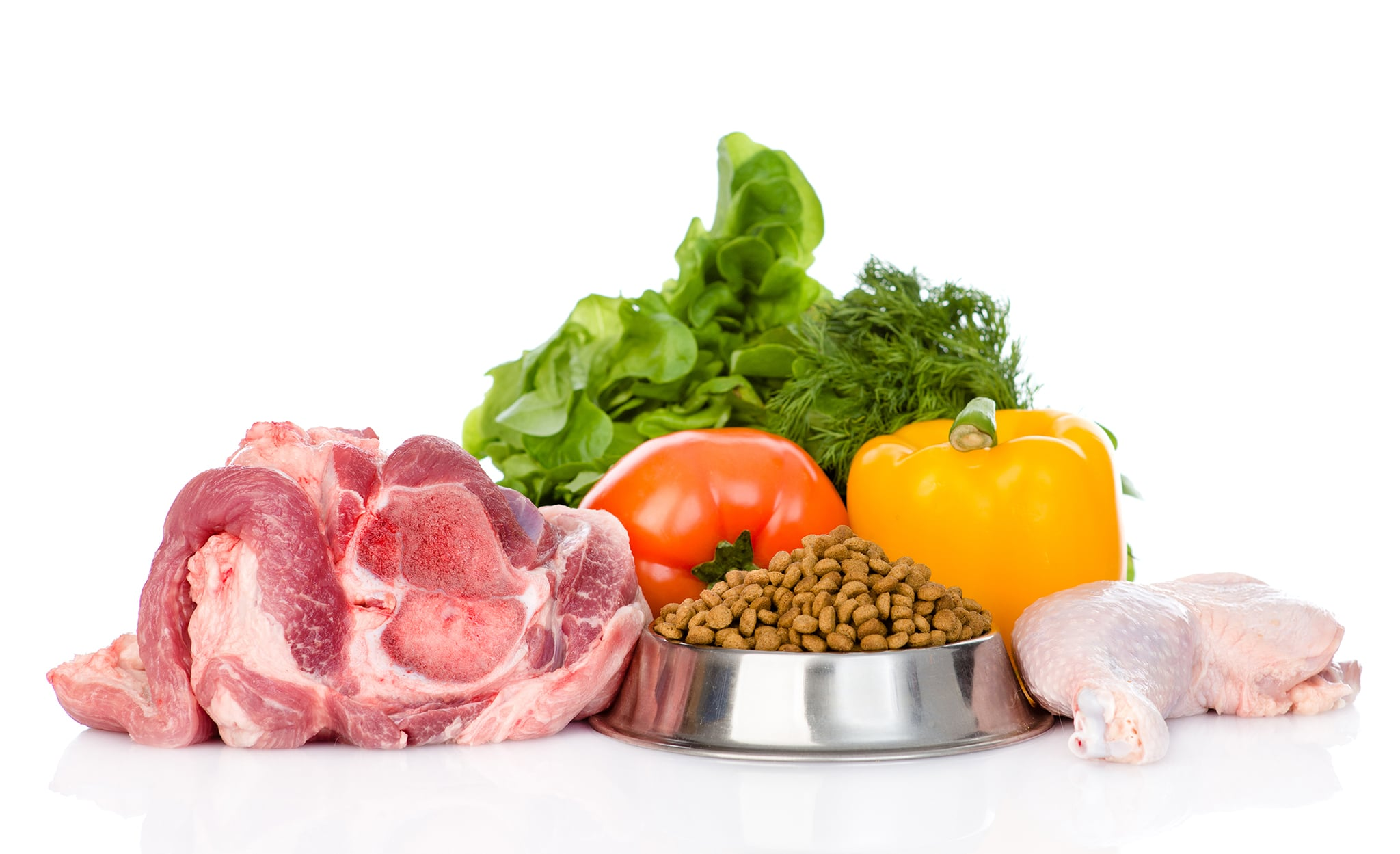Dog food freebies 2018